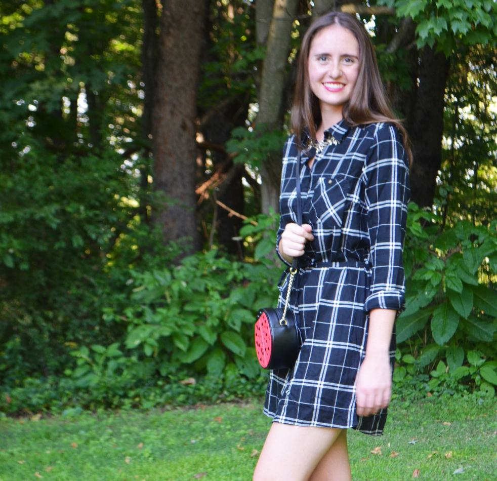 plaid h&m dress shirtdress shirt ladybug purse bag kate spade statement necklace j. crew lace up flats how to wear how to style outfit of the day fall fashion